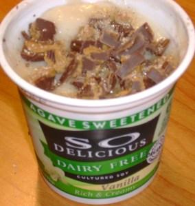 So Delicious Vanilla Soy Yogurt With Newman's Own Organic Milk Chocolate PB Cup And Vanilla Sugar