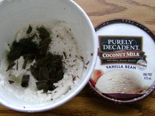 Vanilla Bean Coconut Milk Ice Cream And Endangered Species Organic 70% Dark Chocolate