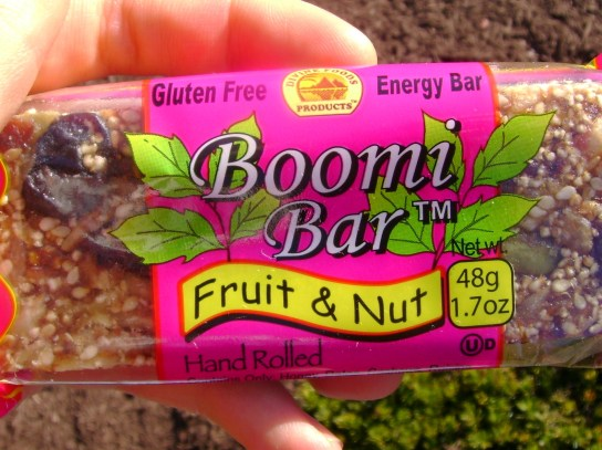 Fruit & Nut Boomi Bar