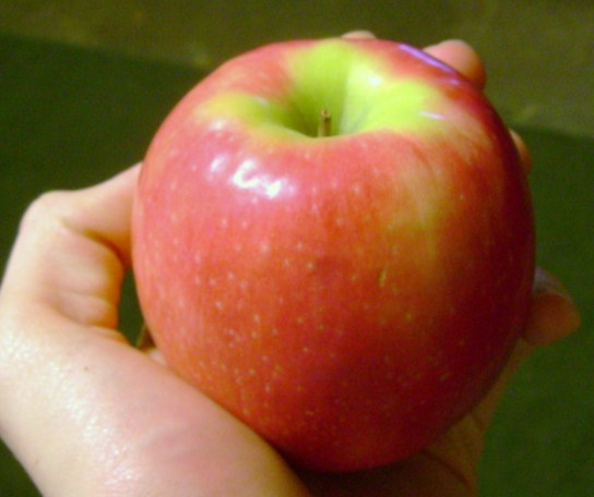Organic Cripps Pink Apple