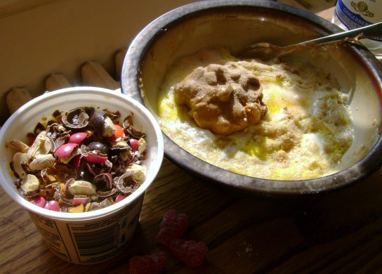 Oatmeal With An Egg And Cinnamon Raisin Peanut Butter, Vanilla Soy Yogurt With Milk Chocolate Peanuts