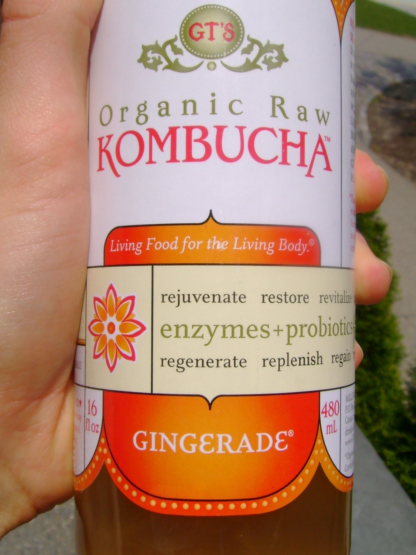 Gingerade Kombucha