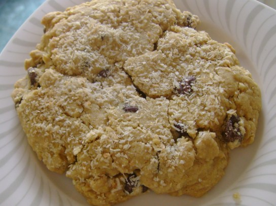 Vegan Gluten-Free Chocolate Chip Cookie