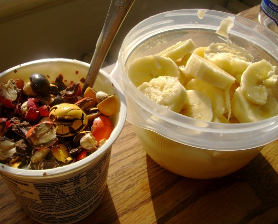 Vanilla Soy Yogurt With Milk Chocolate Peanuts, Plain Greek Yogurt With Honey And Banana