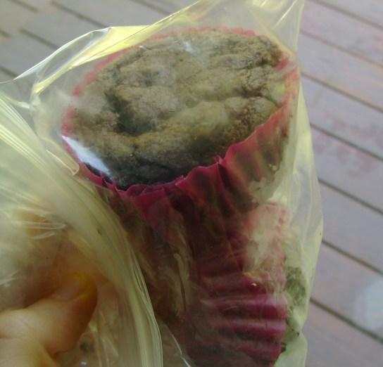 Vegan GF Midnight Chocolate Cupcakes